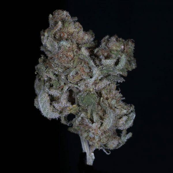 Buy Cannatonic CBD Kush| Buy Cannatonic CBD Flower Strain| Buy Cannatonic CBD Marijuana Strain | Buy Cannatonic CBD Flower| Buy CBD Cannatonic Flower|