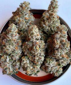 Buy Rainbow Chip Weed| Buy Rainbow Chip Strain| Rainbow Kush|