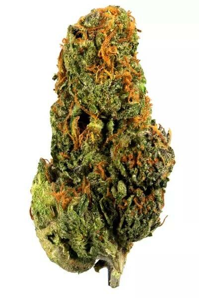 Buy Gelato Weed Strain Online