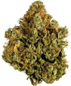 Buy White Widow Weed Online