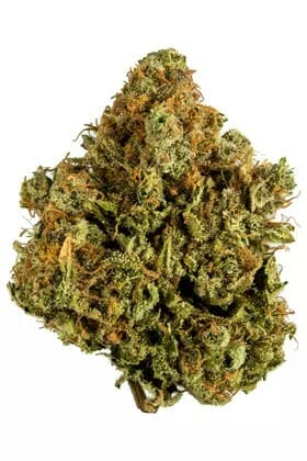 Buy White Widow Weed Online